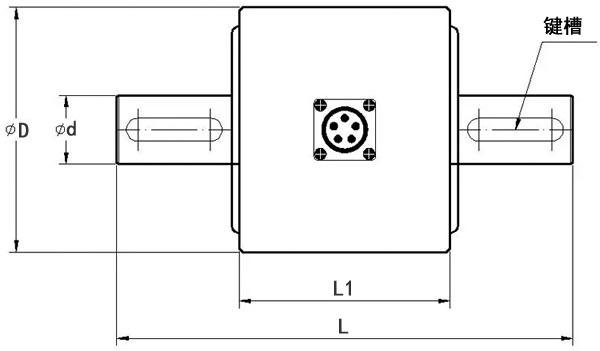 LZ-N6静态扭矩传感器